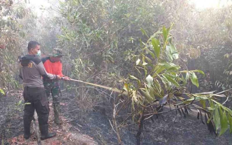 Petugas memadamkan kebakaran hutan dan lahan di Kasongan.