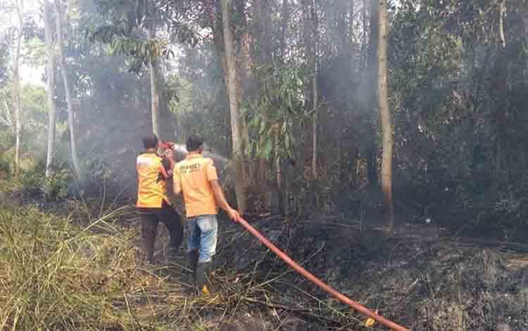 Personel BPBD Kabupaten Kapuas bersama relawan memadamkan kebakaran lahan di dekat Jalan Trans Kalimantan, Desa Pulau Telo, Kecamatan Selat.
