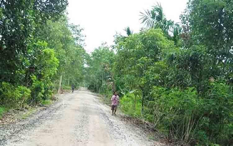 Salah satu ruas jalan di wilayah Kecamatan Kahayan Kuala, Kabupaten Pulang Pisau.