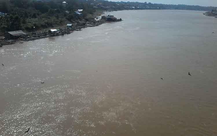 Debit air Sungai Katingan mulai pasang seiring adanya hujan dalam beberapa hari ini.