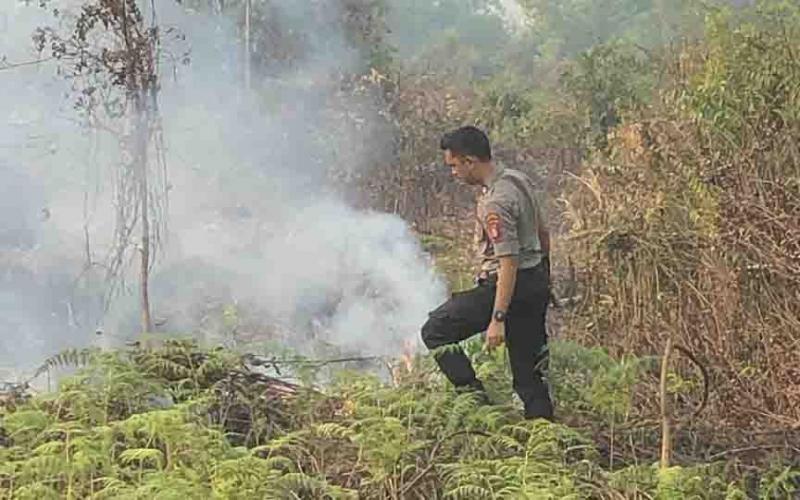 Aksi spontan ajudan Kapolres Kotim, AKBP Mohammad Rommel melakukan pemadaman kebakaran lahan di Jalan MT Haryono, Sampit, Senin, 2 September 2019.