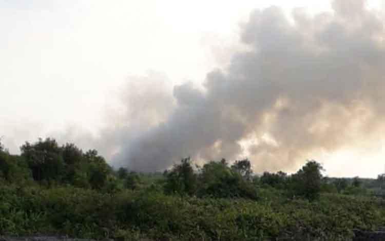Kebakaran lahan yang diduga terjadi di area perusahaan kayu. Kebakaran itu kini ditangani Pemkab Kotim.