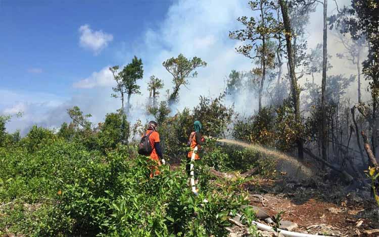 Satgas Karhutla Seruyan memadamkan kebakaran lahan. Sementara itu DPRD Seruyan mengimbau masyarakat agar jangan membuka lahan dengan cara dibakar