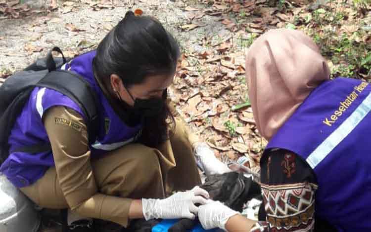 Petugas saat sedang mengambil darah dari ayam milik warga. Itu bertujuan untuk mengetahui penyebaran penyakit flu burung.