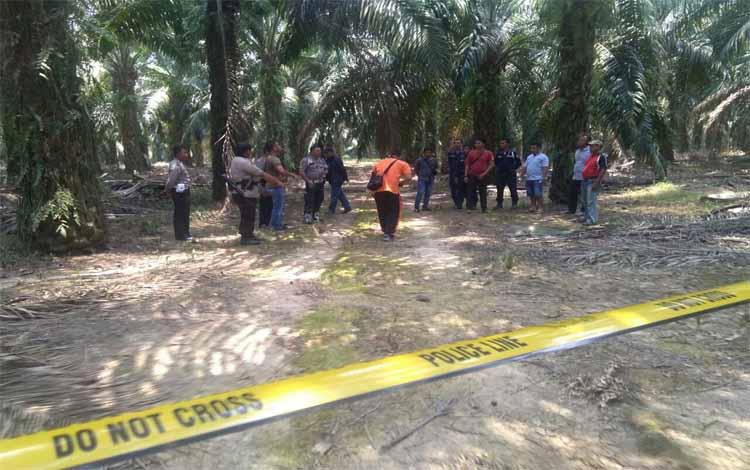 Polisi telah memasang police line di tempat pencurian kelapa sawit yang membuat seorang tersangka tewas karena berupaya menyerang anggota Brimob dan Satpam, Jumat 13 September 2019