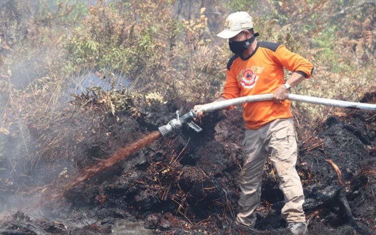 Bupati Katingan Sakariyas memadamkan kebakaran lahan gambut di Desa Jahanjang, Jumat, 13 September 2019. Bupati menyebut bahwa kebakaran yang terjadi di lahan gambut akan sulit dipadamkan.