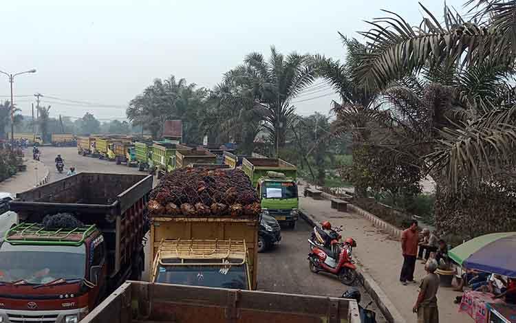 Sopir truk material di Kotim saat melakukan aksi mogok kerja setelah mereka tidak dilayani membeli solar subsidi, Senin 16 September 2019. Tetapi, hasil rapat, truk material bisa isi solar subsidi tapi dibatasi.