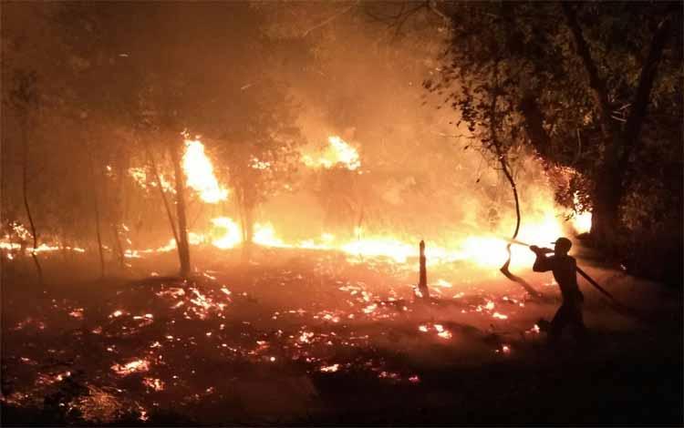 Petugas dari tim Satgas Karhutla Kotim memadamkan kebakaran lahan di Jalan Jendral Sudirman Km 10 Sampit. Lahan ini terbakar diduga karena disengaja, Jumat 20 September 2019