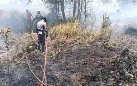 Petugas Polres Kotim terlihat dalam pemadaman kebakaran. Kerja kerjas Polres Kotim dalam menangani kebakaran hutan dan lahan mendapat apresiasi dari kalangan DPRD Kotim.