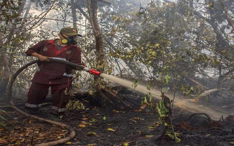 Kawasan Taman Nasional Sebangau terbakar. Seorang petugas menyemprotkan air ke lahan yang terbakar di kawasan TNS, Selasa 24 September 2019. Saat ini kawasan TNS bertahan dalam kepungan api. Setiap hari petugas TNS harus berjibaku dengan api