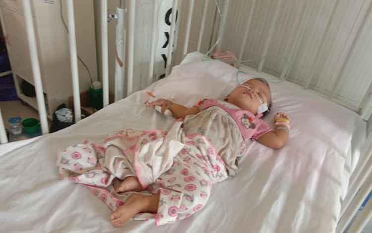 Hani bayi kembar yang menderita penyakit leukositosis masih mendapat perawatan di RSUD Pulang Pisau, Jumat, 27 September 2019. Sementara saudarinya Hana, meninggal dunia.