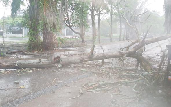 Hujan deras disertai angin kencang melanda Kota Palangka Raya, Minggu, 29 September 2019. Terkait hal itu, Kasat Lantas Polres Palangka Raya AKP Anang Hardyanto meminta para pengemudi dan pengendara untuk lebih berhati-hati.