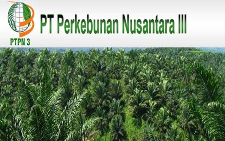 PT Perkebunan Nusantara III (PTPN) (Persero), melalui anak perusahaan, PT Industri Nabati Lestari (I