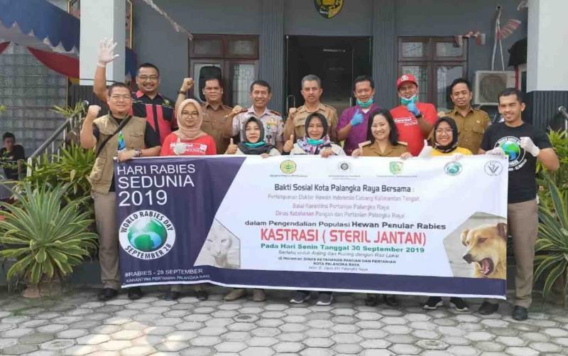 Dinas Ketahanan Pangan dan Pertanian atau DKPP Kota Palangka Raya menggelar kegiatan sterilisasi atau kastrasi kucing dan anjing ras lokal, Senin, 30 September 2019.