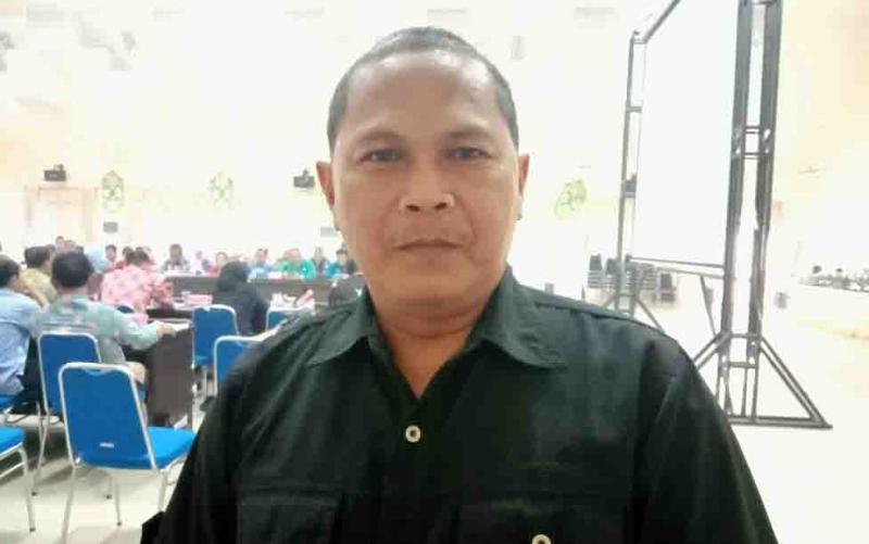 Sekretaris BPBD Kabupaten Pulang Pisau, Rudi Purwadi, Kamis, 3 Oktober 2019, mengatakan kebakaran hutan dan lahan masih terjadi di sejumlah wilayah.