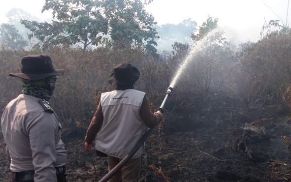 Titik panas atau hotspot akibatkebakaran hutan dan lahan atau karhutla di Provinsi Kalimantan Tengah menurun drastis. Hal ini tidak lepas dari hujan deras yang melanda sejumlah kabupaten pada Minggu dan Senin, 6-7 Oktober 2019.