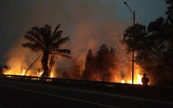 Luas lahan terbakar di Kabupaten Kotawaringin Timur (Kotim) selama musim kemarau lebih dari 1.000 hektare.