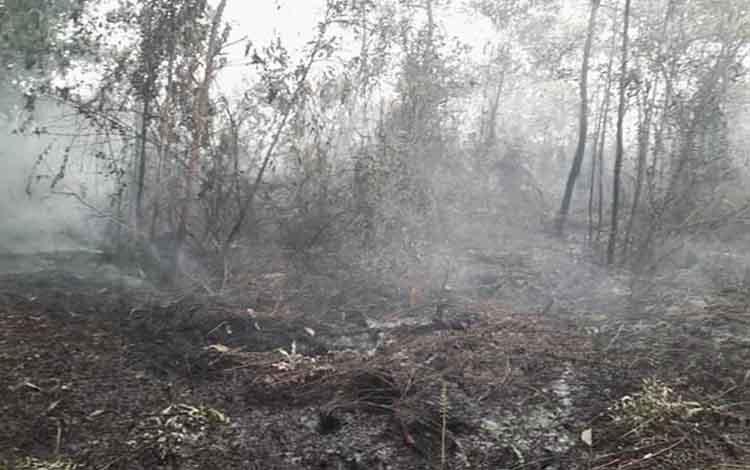 Pemprov Kalteng masih mewaspadai ancaman Karhutla meski bencana tersebut termasuk kabut asap sudah berkurang