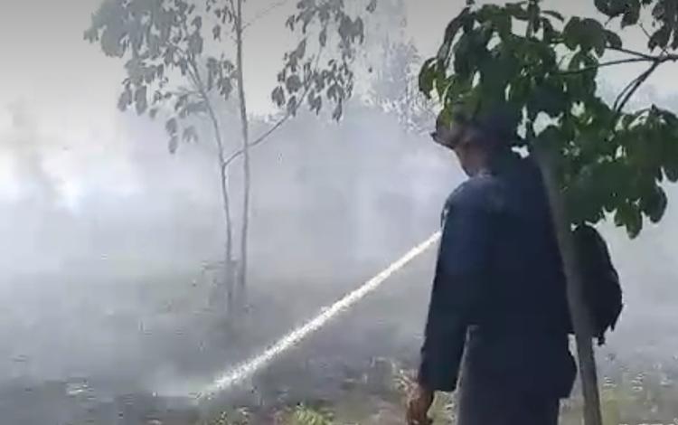 Kebakaran lahan di Kotim kembali terjadi setelah beberapa hari tidak diguyur hujan, Senin, 14 Oktober 2019.