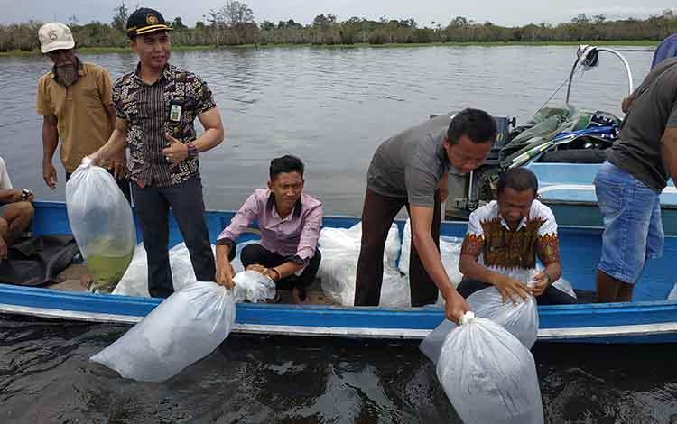 Dinas Perikanan Seruyan saat melakukan penebaran bibit ikan di Sungai Seruyan. Hal itu dilakukan untuk menjaga kelestarian ikan.