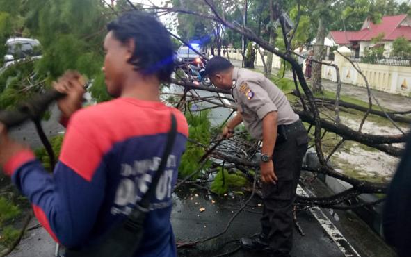 Anggota Polsek Pahandut membantu petugas Badan Penanggulangan Bencana Daerah (BPBD) dan masyarakat membersihkan pohon tumbang di sejumlah titik di Kota Palangka Raya.