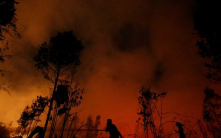Kebakaran lahan gambut di Taman Nasional Sebangau, beberapa waktu lalu.
