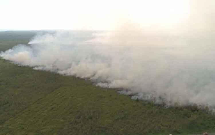 Karhutla yang terjadi di  Sungai Umbang, Kecamatan Kumai beberapa hari lalu (dokumen BPBD Kobar)