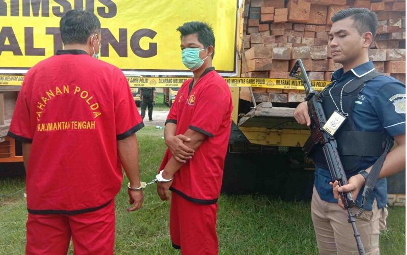 Dua tersangka kasus kayu ilegal yang diamankan Polda Kalteng.