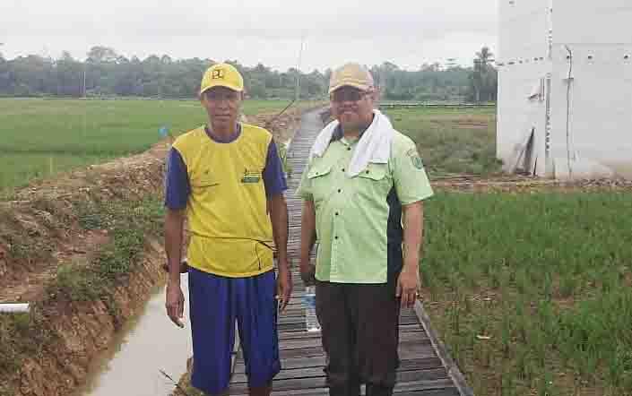 Kepala Dinas Pertanian dan Peternakan Barito Timur, Riza meninjau langsung pelaksanaan Program Serasi.