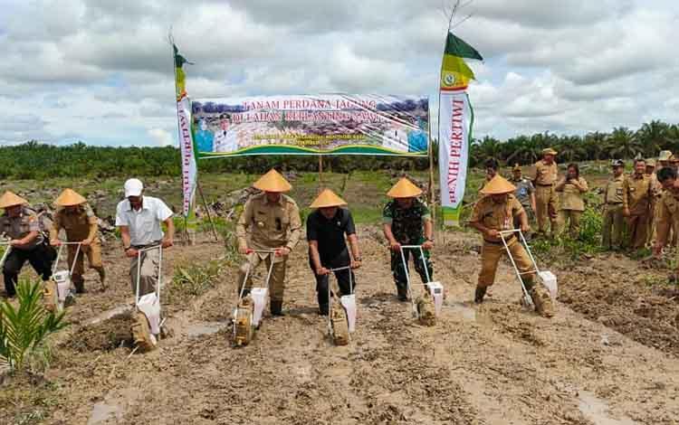 Bupati dan sejumlah perwakilan dari unsur OPD dan FKPD saat menanam benih jagung di lahan replanting, desa Bukit Raya, kecamatan Menthobi Raya, Senin 16 Desember 2019.