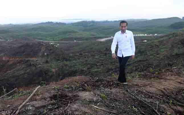 Presiden Joko Widodo meninjau lokasi rencana ibu kota baru di Sepaku, Penajam Paser Utara. (foto : ANTARA)