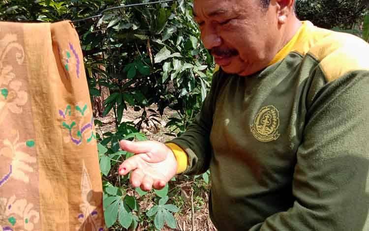Petugas BKSDA Kalimantan Tengah, M Aliansyah terluka di bagian telunjuk tangan sebelah kanan saat mengamankan buaya tangkapan warga di Desa Mantaren Kecamatan Kahayan Hilir Kabupaten Pulang Pisau, Rabu, 26 Febuari 2020 sore.