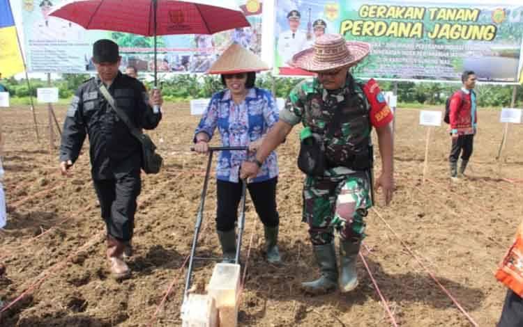Wakil Bupati Gunung Mad Efrensi Lp Umbing menanam jagung hibrida di lokasi Poktan Bawit Jaya, Kelurahan Tewah, Kecamatan Tewah.