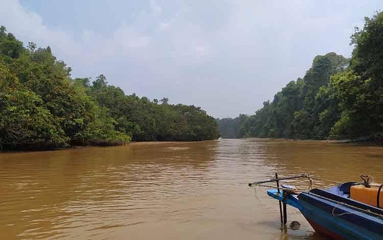 Kawasan hutan di Kabupaten Pulang Pisau yang berada di Desa Pilang.