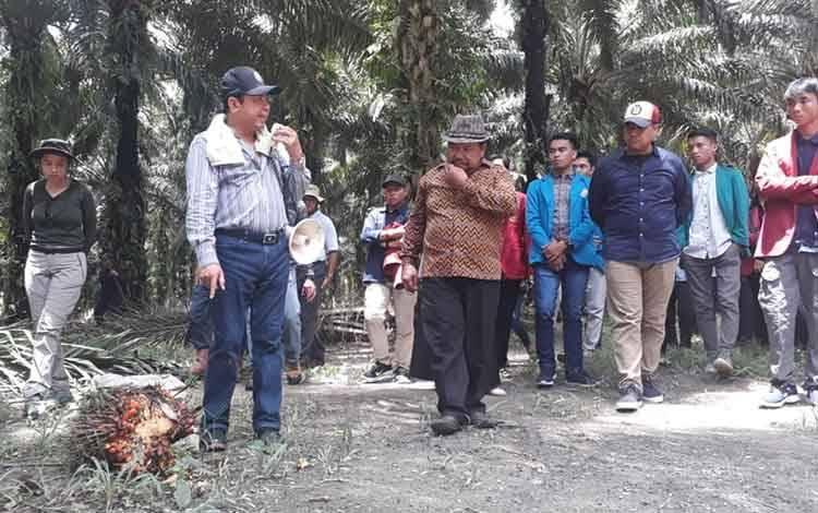 Sebanyak 39 Mahasiswa dari tujuh perguruan tinggi di Palangka Raya tidak hanya diajak melihat proses pengolahan sawit, mereka juga diajak melihat langsung proses pemanenan dengan mekanisasi di kebun sawit milik PT Sawit Sumbermas Sarana Tbk atau SSMS, Selasa, 10 Maret 2020.