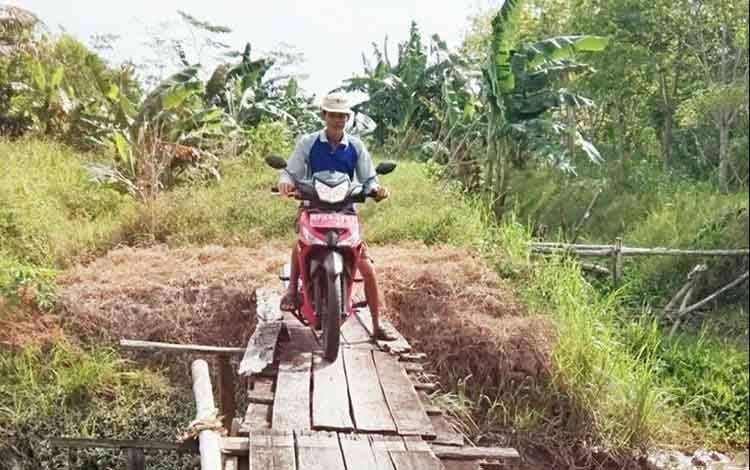 Pangsa Pasar Menjanjikan Warga Desa Bangun Harja Semangat Kembangkan Tanaman Gembili