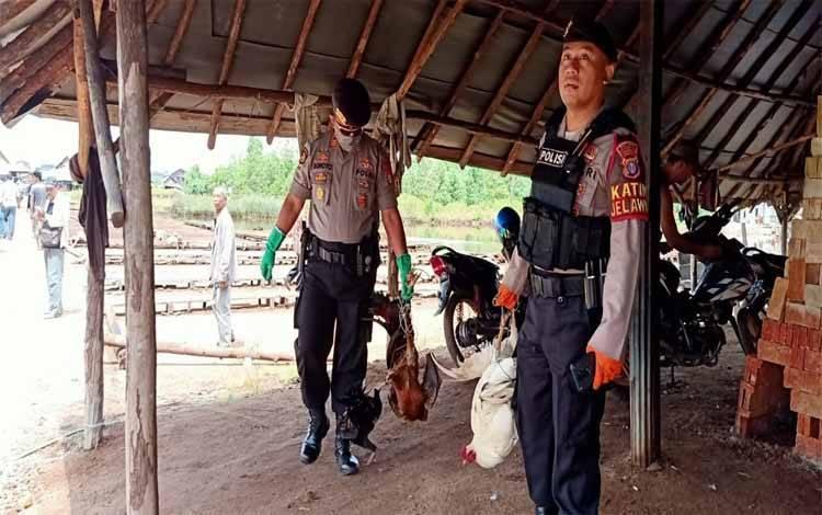 Aparat kepolisian mengamankan barang bukti berupa beerapa ekor ayam di areal perjudian sabung ayam yang digerebek mereka, Minggu, 05 April 2020