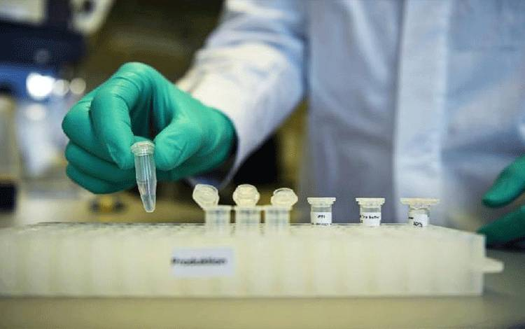 Pegawai Philipp Hoffmann, dari perusahaan biofarmasi Jerman CureVac, menunjukkan alur kerja penelitian pada vaksin untuk penyakit virus Corona (COVID-19) di sebuah laboratorium di Tuebingen, Jerman, 12 Maret 2020. Foto diambil pada 12 Maret 2020. [REUTERS / Andreas Gebert]