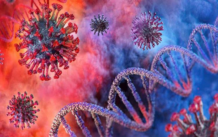 Ilustrasi virus Corona atau Covid-19. Shutterstock