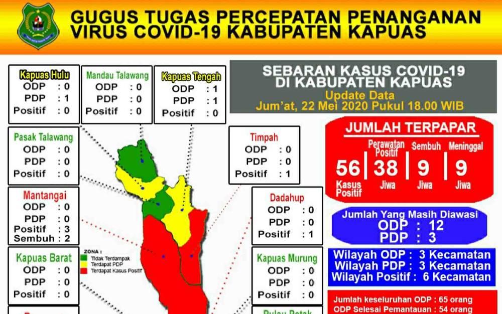 Grafis perkembangan kasus covid-19 di Kabupaten Kapuas.