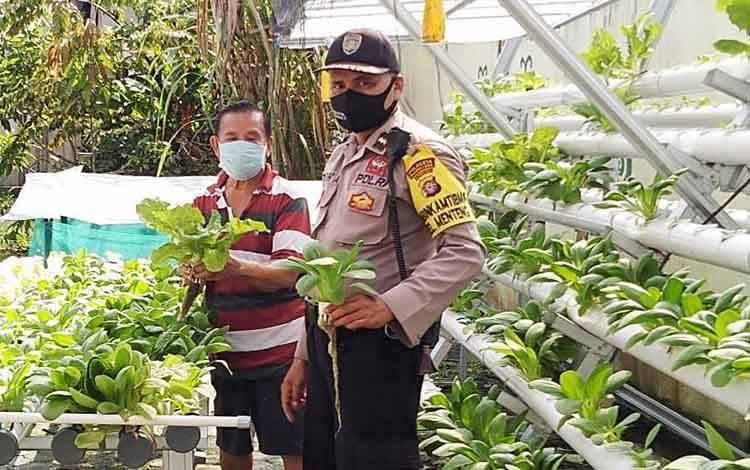 Bhabinkamtibmas Kelurahan Menteng Polresta Palangka Raya Aipda Toha bersama pemilik tanaman hidroponik Yusuf