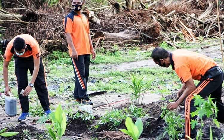 Personel Polresta Palangka Raya saat penanaman bibit buah dan sayuran di lahan belakang markas komando, Jumat 3 Juli 2020.