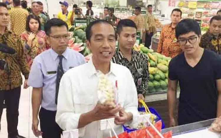 Presiden Republik Indonesia Jokowi Dodo