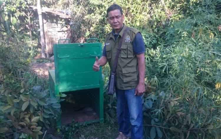 Kepala BKSDA Pos Jaga Sampit Muriansyah, saat memasang peranglap beruang madu di salah satu wilayah di Sampit. Sementara pihaknya akan memasang perangkap kembali di Desa Sebabi.