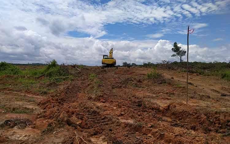 Areal lahan yang digarap di Desa Bukit Raya untuk perkebunan kelapa sawit