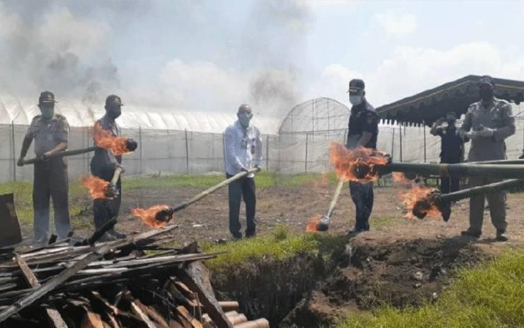 Balai Besar Karantina Pertanian (BBKP) Surabaya melakukan pemusnahan 1,5 ton benih sawi putih senilai Rp1,2 miliar asal Korea Selatan untuk mencegah potensi penyebaran penyakit tumbuhan ke wilayah Indonesia. ANTARA/HO-Kementerian Pertanian