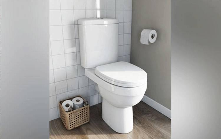 Ilustrasi toilet duduk. victoriaplum.com