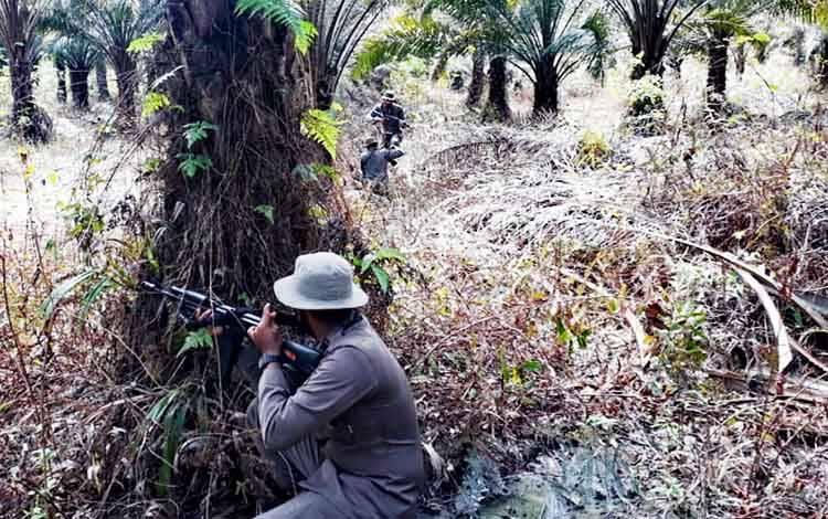 Anggota Brimob Polda Kalteng saat melakukan latihan GAG di kebun sawit Bundaran Pangkalan Lima Sampit, Kabupaten Kotawaringin Timur, Kamis pagi 13 Agustus 2020.