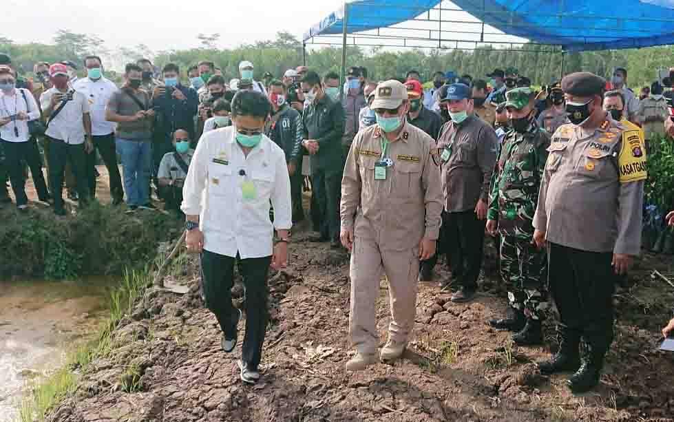 Kunjungan kerja Menteri Pertanian RI, Syahrul Yasin Limpo ke Kabupaten Pulang Pisau, Senin, 31 Agustus 2020.