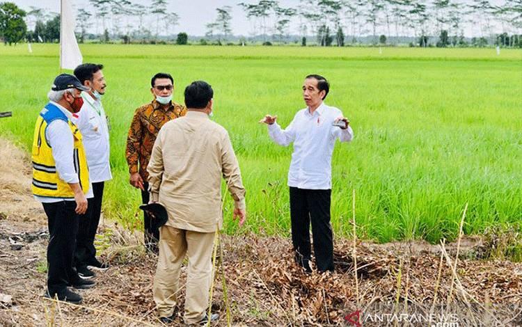 Presiden Joko Widodo (Jokowi) meninjau pekerjaan rehabilitasi jaringan irigasi di Desa Pangkoh Hulu di Kabupaten Pulau Pisau, Kalimantan Tengah pada Kamis (9/7/2020). ANTARA/Tangkapan layar tweeter @jokowi/pri.